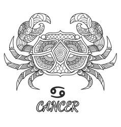 Cancer vector