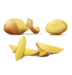 clipart with raw peeled potato and slices vector image