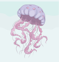 jellyfish hand drawn vector image