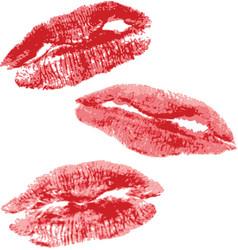Lips imprint vector image