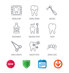 stomatology tooth and dental crown icons vector image