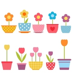 Set of colorful flowers in pots vector image vector image