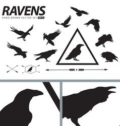 Hand Drawn Ravens Set vector image
