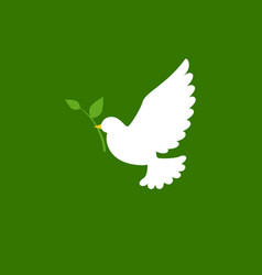 dove and olive branch icon in flat style vector image vector image