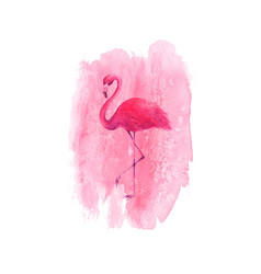 flamingo on watercolor pink spot background vector image