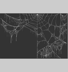 Large white torn spider web on black background vector