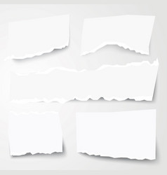 set different torn paper shapes vector image