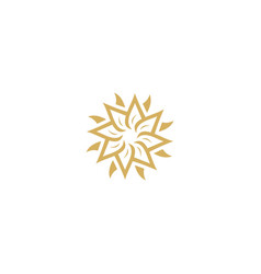 star flower circle company logo vector image