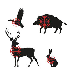 targets with black silhouettes of animals vector image vector image