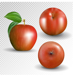 set red apple isolated on transparentbackground vector image vector image