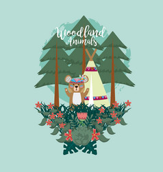 Bear woodland animals woodland animals vector