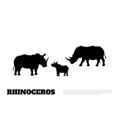 Black silhouette of rhino on white background vector