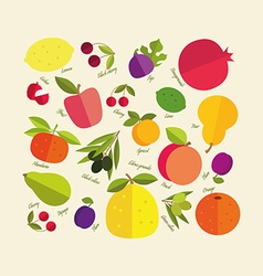 Color fruit vector