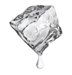 Opaque ice cube vector