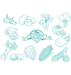 Outline hand drawn vegetable set flat style thin vector