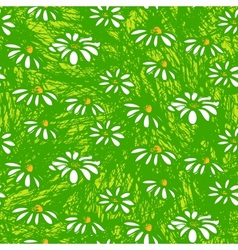 Pattern with hand drawn daisy flowers vector