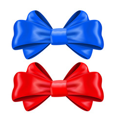 red and blue silk ribbon bows decoration element vector image