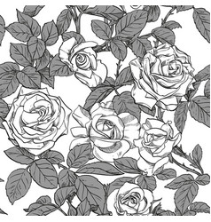 seamless pattern black and white roses vector image