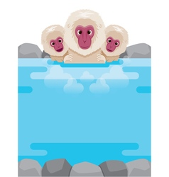 Snow Monkey Relaxing In Hot Spring Frame vector