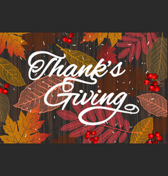 thanksgiving holiday banner with congratulation vector image