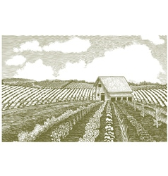 Woodcut Garden vector image