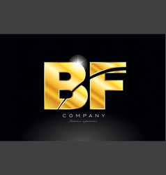 Combination letter bf b f gold golden alphabet vector