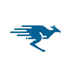 fast colorful kangaroo logo vector image