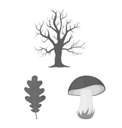 Forest and nature monochrome icons in set vector