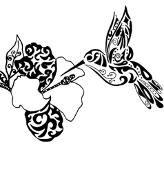Hiqh qualiti hummingbird and orchid for coloring vector