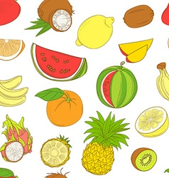 Outline hand drawn seamless colorfull fruit vector