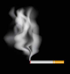 Realistic burning cigarette with smoke vector