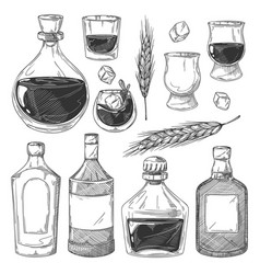 whiskey bottles sketch set vector image