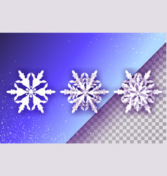 3 white paper cut snowflakes three origami winter vector image