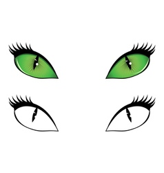 Cartoon cat eyes vector image