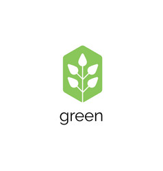 green leaf logo design template vector image