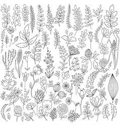 Handmade flowers and leaf elements set vector image vector image