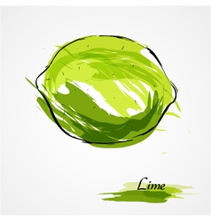 lime whole vector image