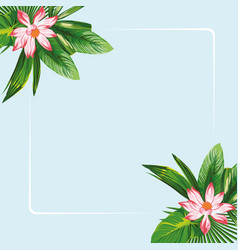 lotus flowers leaves frame blue background vector image