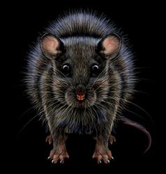Mouse realistic artistic graphic color portrai vector