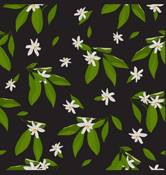 orange blossom flowers and leaves seamless vector image