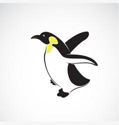 penguin design on white background polar animals vector image