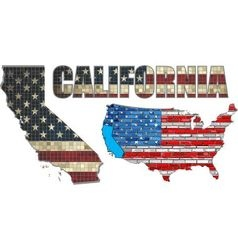 USA state of California on a brick wall vector