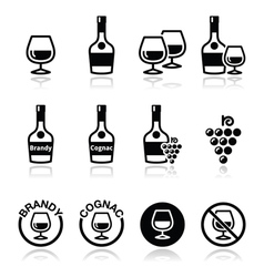 Brandy and cognac icons set vector image