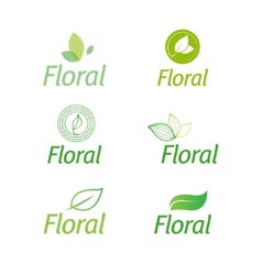 Floral set of leaf green eco icons vector