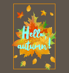 hello autumn poster with fallen leaves vector image vector image