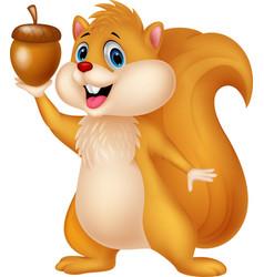 Squirrel cartoon with nut vector image vector image