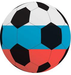 a soccer ball vector image