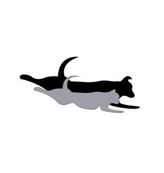 cat and dog running pet silhouette icon vector image
