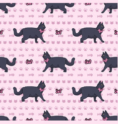Cute cartoon british shorthair cat with pink bow vector