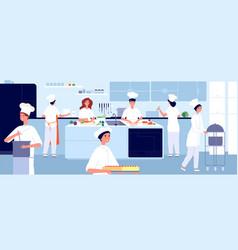 professional cooking kitchen restaurant cook vector image